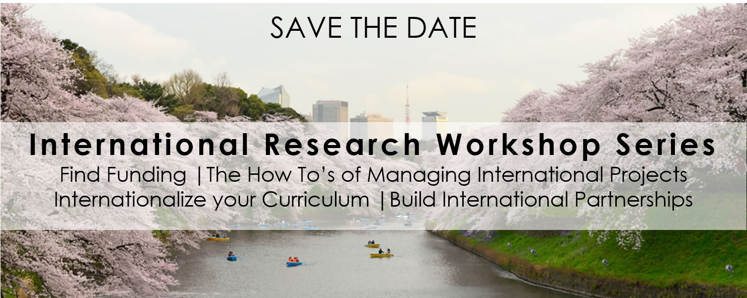 International Research Workshops Series